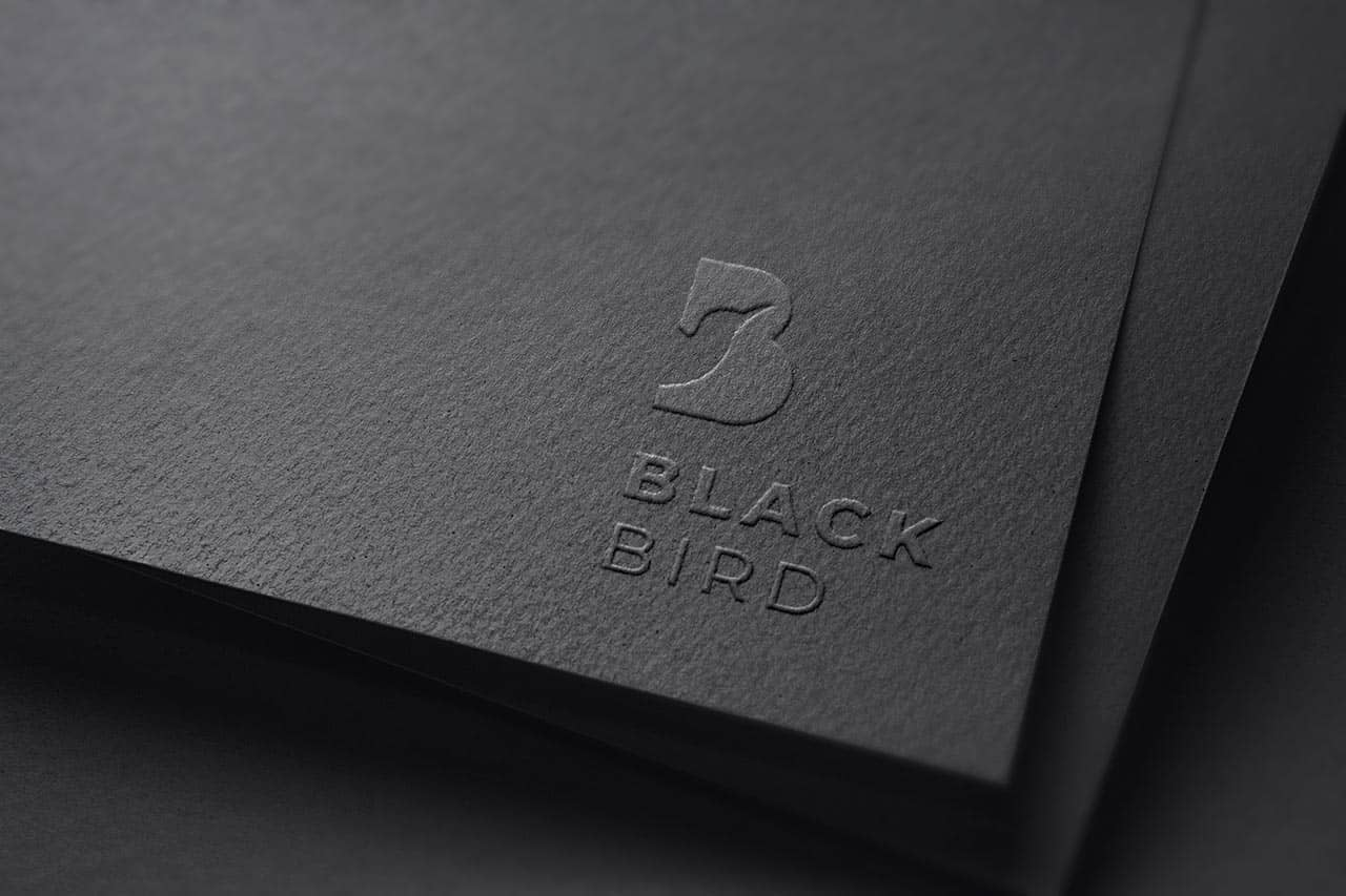Graphiste – Logo – Black Bird